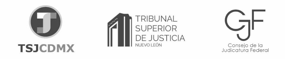 Logo de peritos Tribunal Superior de Justicia de CDMX Tribunal Superior de Justicia de NL Consejo de la Judicatura Federal
